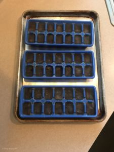 www.redneckrhapsody.com Iced Coffee - Coffee Ice Cubes Poured up in trays on a cookie sheet to set in freezer.